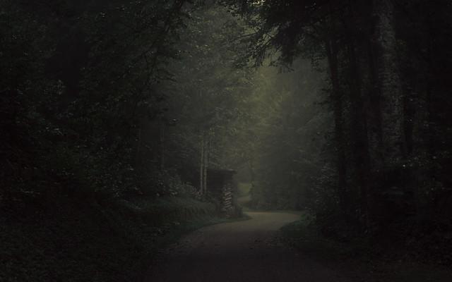 Lurking Shadows