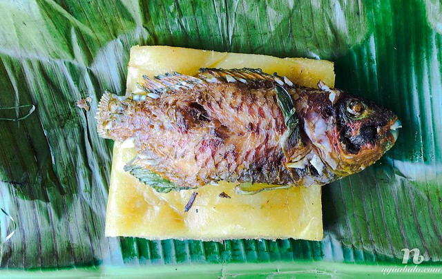 Du lịch bụi Vanuatu (5): Ẩm thực Vanuatu
