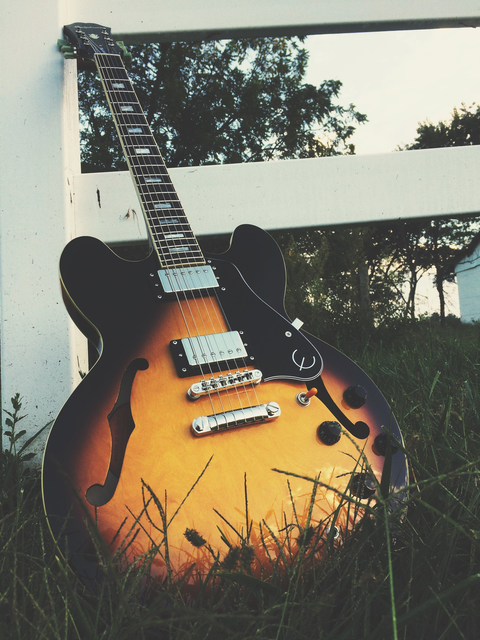 NGD Epiphone ES-335 Pro | The Gear Page