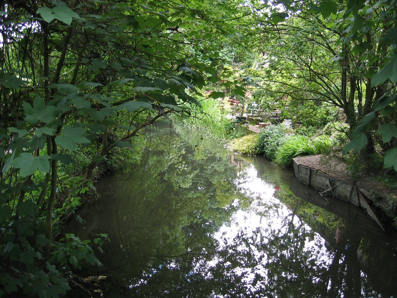 the river darent