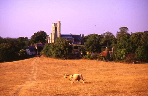 Field and Church