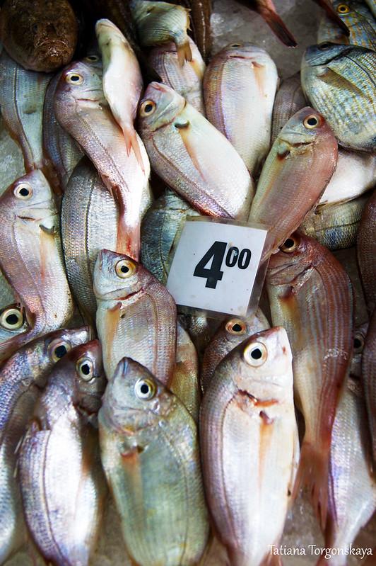 Витрина с свежей рыбкой