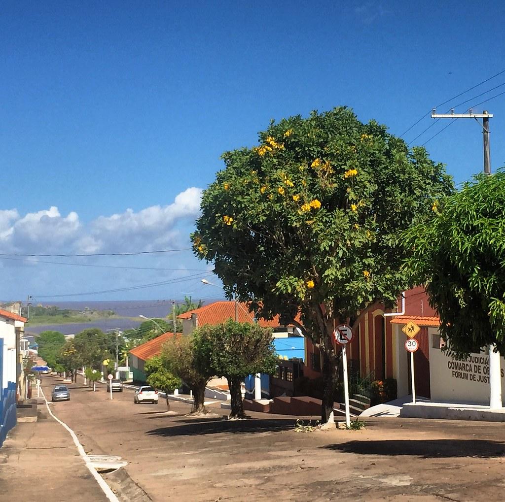 Volta de Bolsonaro a Brasília, adia viagem de 3 ministros ao Pará marcada para hoje, Óbidos (11)