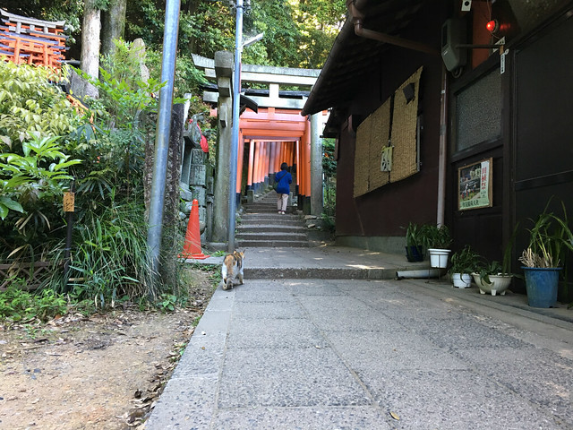 fushimiinari0030