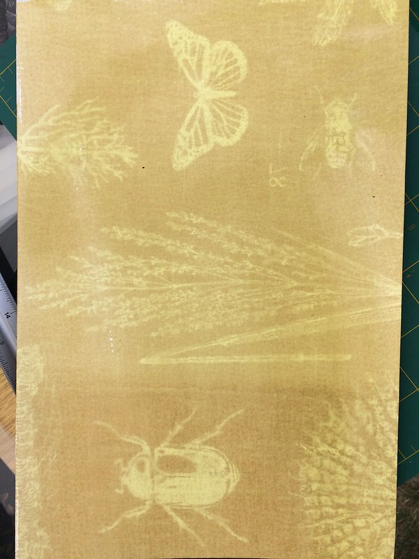 Cyanotype chemistry fail!