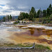 Mammoth Hot Springs, MT