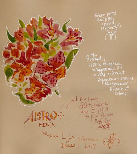 Sketchbook #106: Treasures