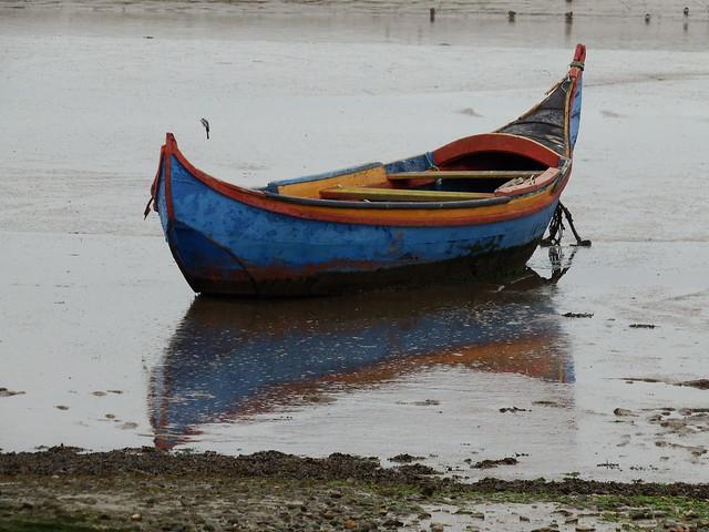 O barco das mem, Fujifilm FinePix S1