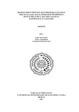RESPON PERTUMBUHAN DAN PRODUKSI TANAMAN MELON (Cucumis melo L.)TERHADAP PEMBERIAN PUPUK ORGANIK CAIR URIN SAPI DAN KOMPOS DAUN LAMTORO-17.tif