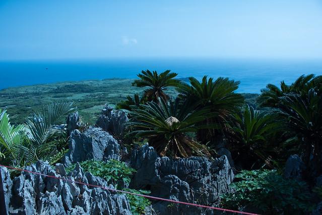 大石林山 Daisekirinzan, Okinawa, 08 Aug 2017 -00037