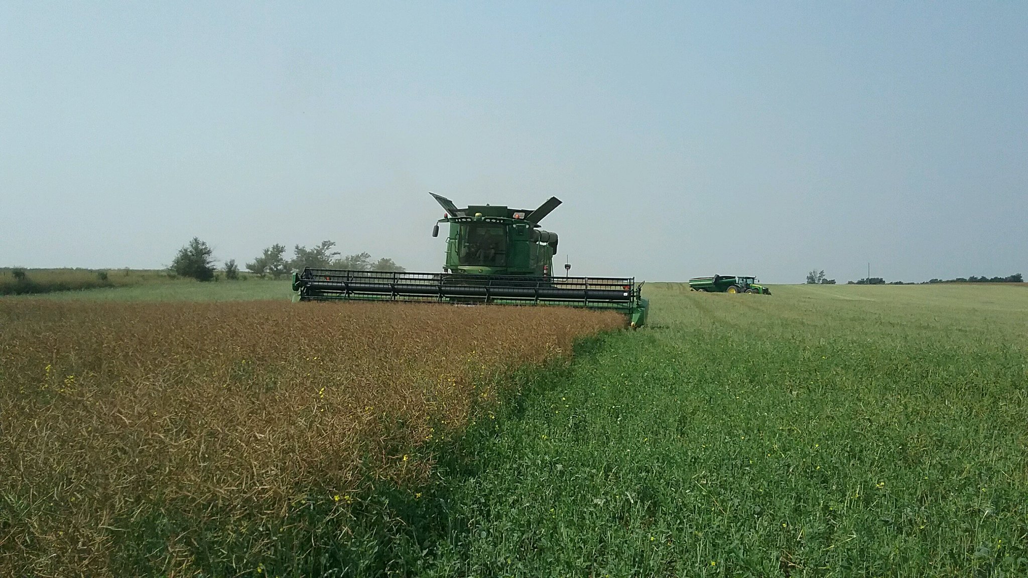 High Plains Harvesting 2017 (Ryan)