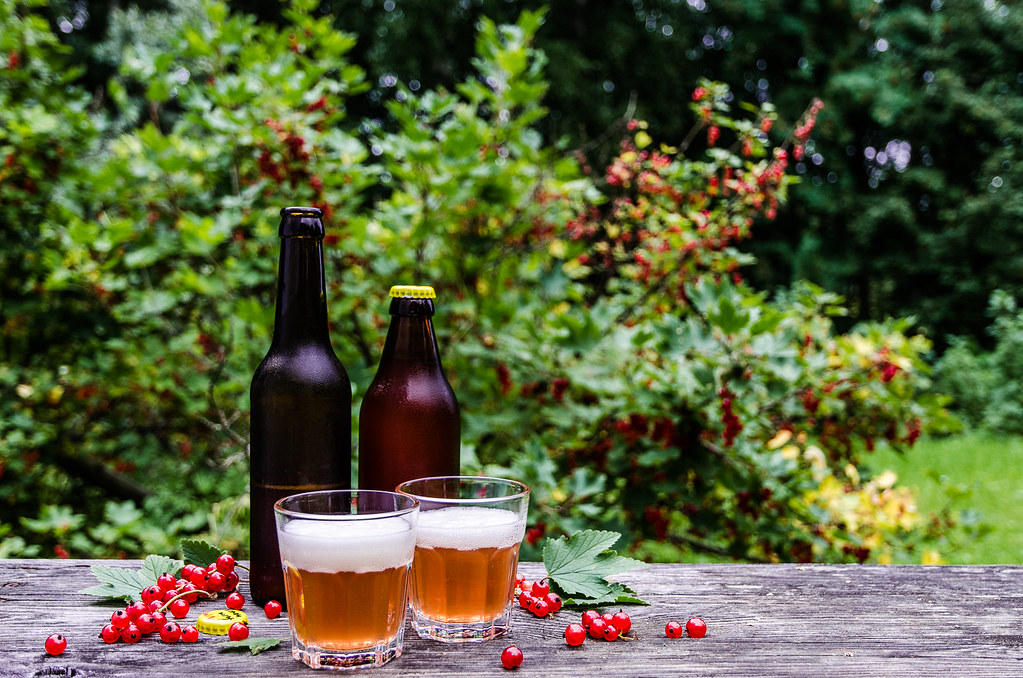 Red Currant Farmhouse Ale