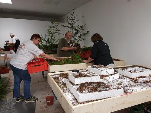Pilzausstellung 2017 - Nach der Ausstellung