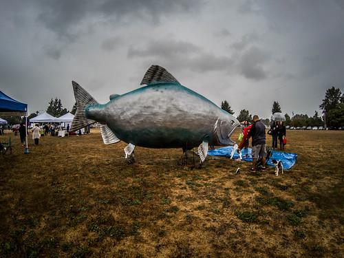 Skagit Salmon Festival-9