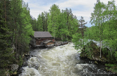 Myllypuro old mill next to rapidly flowing Kirkajoki river