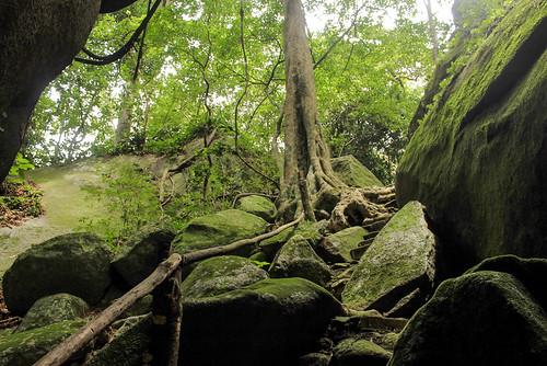 Piedra de Huixtla (56)