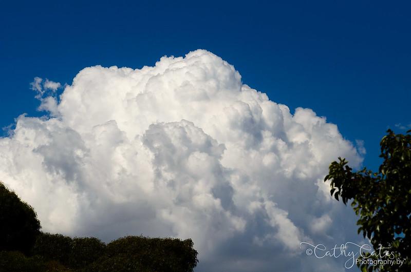 Big Fluffy White Clouds