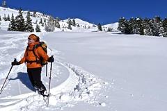 Skitour mit Tiefschneeabfahrt in den Sarntaler Alpen. Foto: Günther Härter.