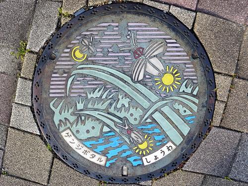 Showa Yamanashi, manhole cover (山梨県昭和町のマンホール)