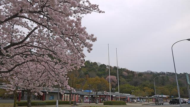 宮島SA上り(3)