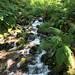 Small photo of Waterfall along the way