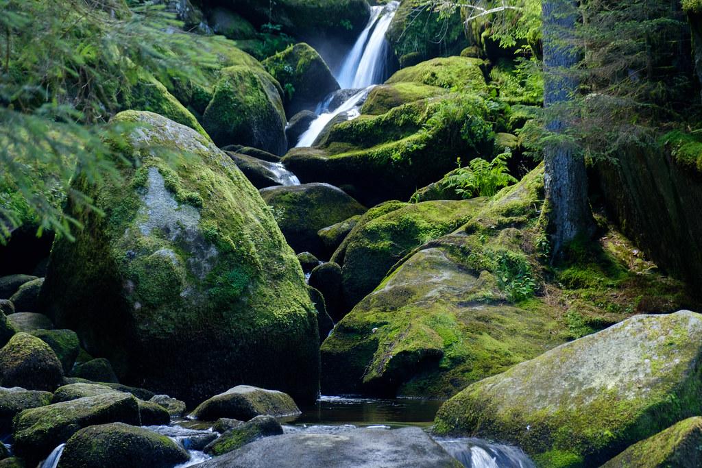 Cascadas de Triberg - 2