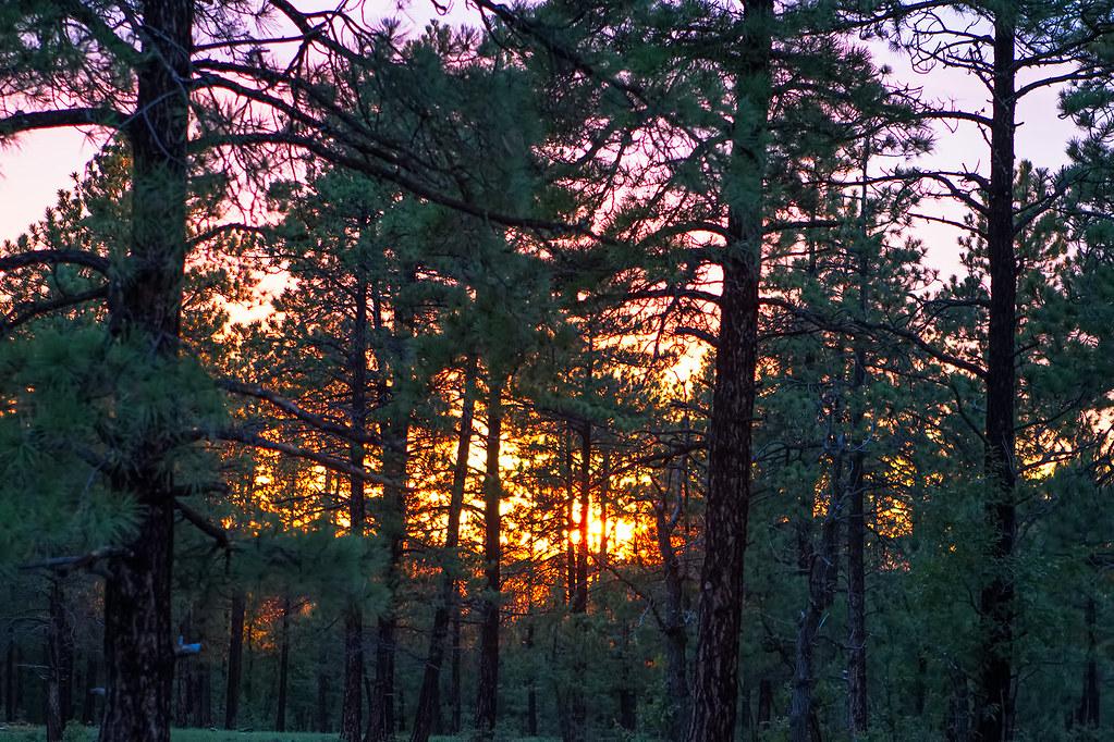 Sunset-15-7D1-072817