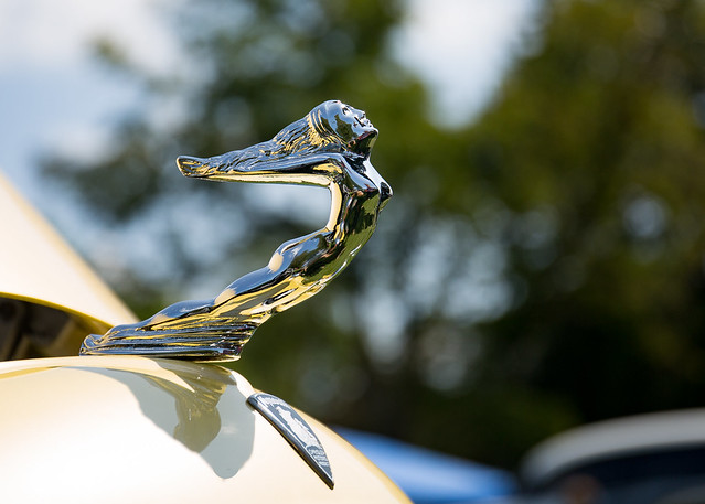 Hood ornament on a, Canon EOS 5D MARK III, Canon EF 24-70mm f/4L IS USM