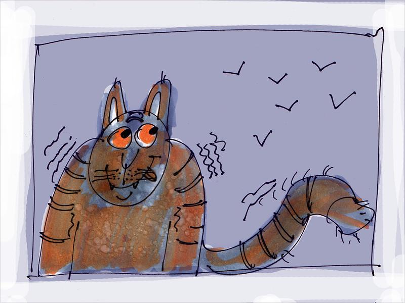 котяра2