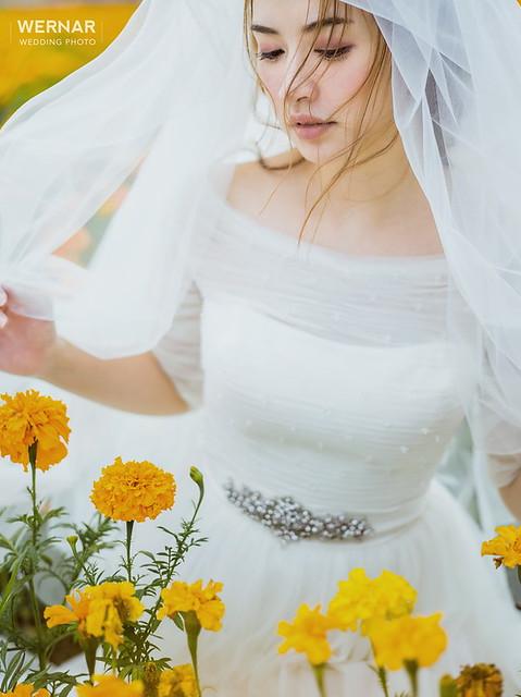 桃園婚紗,台中婚紗,婚紗照,婚紗攝影,拍婚紗,自主婚紗,一站式婚紗,拍婚紗,結婚照,婚紗推薦,花海婚紗,婚紗外拍景點, 萬壽菊