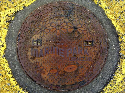 Omaezaki Shizuoka, manhole cover (静岡県御前崎市のマンホール)