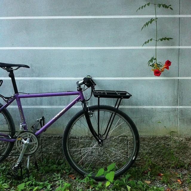 【 お名残惜しゅう… 】 #goodeveningkyoto #ride #PATROL #kyoto #enishicyclecap #vigore