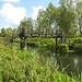 A wooden bridge near Little Baddow Lock, River Chelmer Navigation, Essex