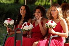 Wedding Party, Cantigny Park. 6 (EOS)