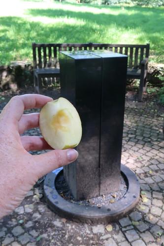 Apfelschnitz bei Rast am Klangstein im Kurpark von Bad Senkelteich