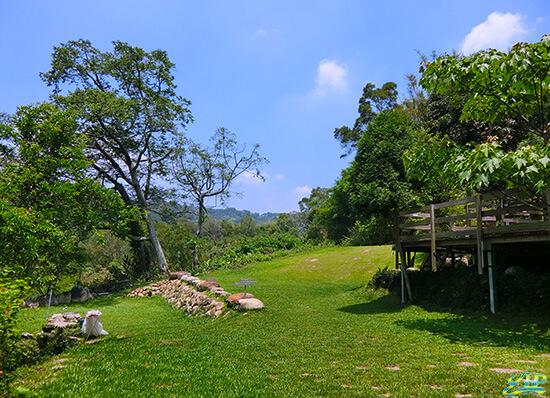 greenery scenic