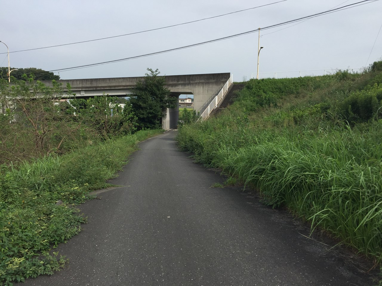 20170826_Arakawa Long Run (24)