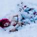 Twice Fallen by Kindra Nikole