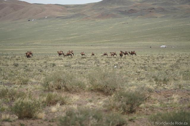 Mongolia Khovd to Ulaangom_-22