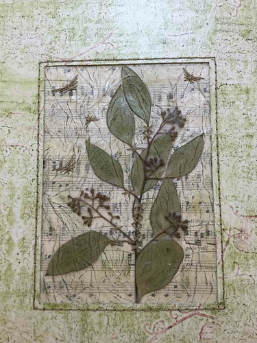 Garden Journal Featuring Salal Leaves