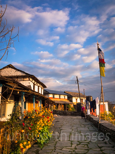 stone houses sunrise asia himalaya machhapuchare himalayas hills flowers slate clouds machhapuchchhare morning trek fishtailmountain pokhara dhampus buildings nepal kaski outdoors dawn sky village indiansubcontinent traditional