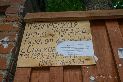 Dunilovo_17-19.jpg