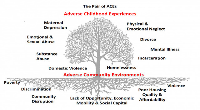 The combination of Adverse Childhood Experiences and Adverse Community Environments -- also known as
