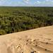 Sand VS Tree