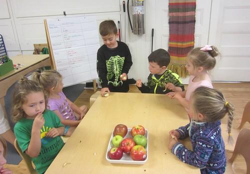 tasting apples