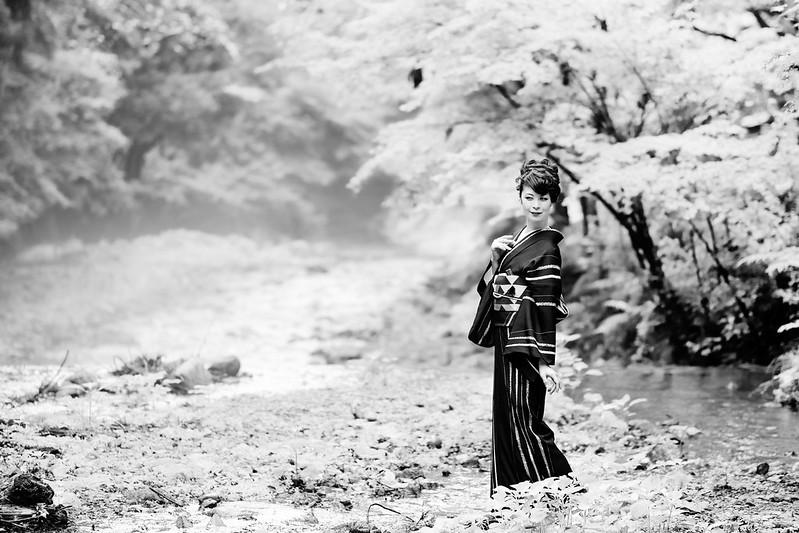 Portrait of Kyoto ( Cocoro Kusano )