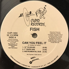FISH:CAN YOU FEEL IT(LABEL SIDE-A)