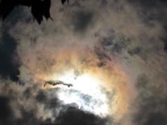 Solar Eclipse 2017 30