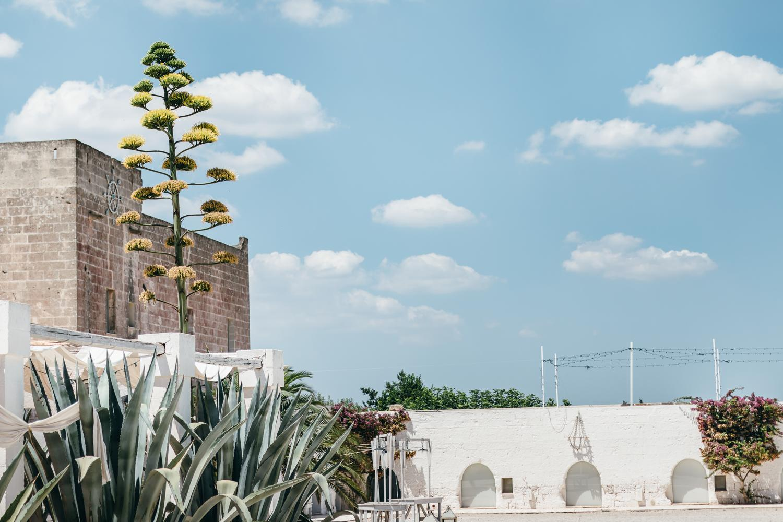 Lab Noon in Puglia | Saghar Setareh-22