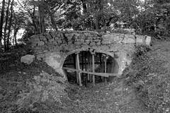 Parc du Château du Tertre - La rivière sèche et le pont de briques - Photo of Dame-Marie
